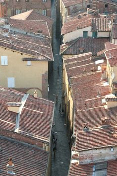 Lucca, Italy from above #italy #Lucca #photography