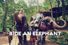 bucket list tumblr | ... Die Tumblr | ride # elephant # bucket list # ... | Bucket Li