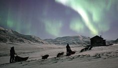 A dog sledding team in the Adventdalen Valley, Svalbard, Norway - Photo: Svalbard Villmarksenter