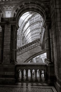 Stair of knowledge, National History museum, London, UK Cool pic!