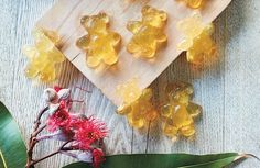 Finally, a yummy gummy that's good for your tummy. Bring it on.