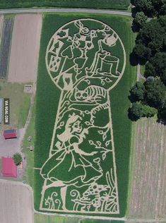 "An aerial view of a corn maze commemorating the 150 year anniversary of ""Alice's Adventures in Wonderland"" - 9GAG"