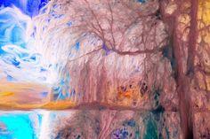 Baum im Winter (a)