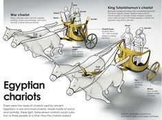 King Tut Egyptian War Chariot infographic. Mystery of History Volume 1, Lesson 23 #MOHI23