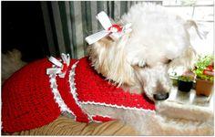 Roupinha de cachorro | ArteShopi | Elo7