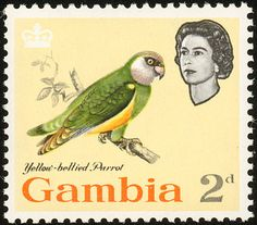 Senegal Parrot stamps - mainly images - gallery format