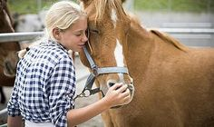 Anfänger-Reitkurse Welsh Pony, Sport, Horses, Animals, Dressage, Kids Learning, Deporte, Animales, Animaux