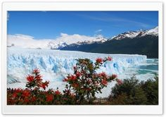 GLACIAL - CHILE HD Wide Wallpaper for Widescreen