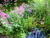 Le Jardin des rêves, (c) JP &  V Herbeth  Lauréats du concours Jardiner autrement 2011