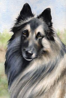 BELGIAN TERVUREN Dog Watercolor Art Print Signed by k9artgallery