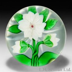 Antique Baccarat white double clematis and two buds glass paperweight.