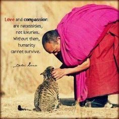 Love and compassion are necessities / Dalai Lama / Buddhism Wisdom Quotes, Me Quotes, Motivational Quotes, Inspirational Quotes, Quotes Positive, Buda Quotes, Spiritual Quotes, Buddha, Great Quotes