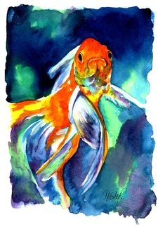 Fancy Goldfish Painting by Christy Freeman - Fancy Goldfish Fine Art Prints and Posters for Sale