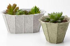 https://www.matrec.com/en/trends-news/paper-pulp-planters