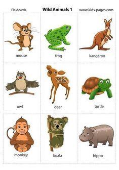 Animals Flashcards - It's fun to learn Kids English, English Study, English Class, English Words, English Lessons, English Grammar, Teaching English, Learn English, English Language