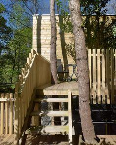 Los troncos y las ramas atraviesan las terrazas y suelos de acceso a las cabañas Jacuzzi, Forest House, Mobile Home, Abandoned, Beautiful Homes, World, Plants, Wood Cabins, Fire Places