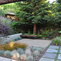 No Grass Yard Design, Pictures, Remodel, Decor and Ideas - page 2