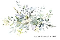 watercolor floral arrangements with leaves, herbs. Botanic composition for wedding, greeting card. - Buy this stock illustration and explore similar illustrations at Adobe Stock