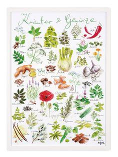 Für die Küche - Poster mit ROT daneben. oder roter Rahmen? :: Human Empire Artist Series Kräuter & Gewürze Poster