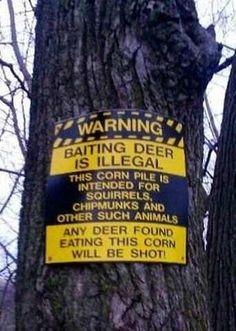 Baiting deer is illegal! - Imgur