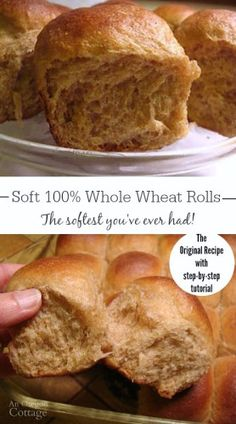Soft Whole Wheat Dinner Rolls The softest whole wheat dinner rolls you've ever had complete with tutorial & make-ahead tip. Easy and so good with or without butter. The post Soft Whole Wheat Dinner Rolls appeared first on Rolls Diy. Bread Machine Recipes, Bread Recipes, Cooking Recipes, Cookbook Recipes, Seafood Recipes, Cooking Pasta, Thai Recipes, Fruit Recipes, Recipes Dinner