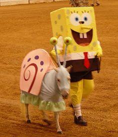 Disfraces para caballos, Bob Esponja y Gary.