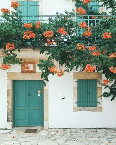 Beautiful doors and flowers, travel wanderlust inspiration