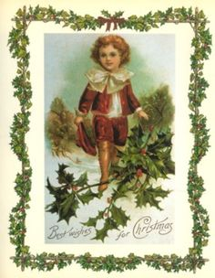 Holly and Ivy Collections