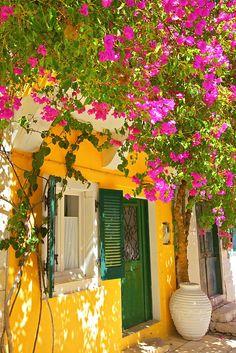 House covered In Bougainvillea, Paxos, The Ionian Islands, Greek Islands, Greece… - Travel Tips Bougainvillea, Beautiful Gardens, Beautiful Flowers, Wonderful Places, Beautiful Places, Colourful Buildings, Greek Islands, Belle Photo, Places To Travel