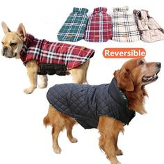 Reversible Use Warm Windproof Pet clothes-GoAmiroo Store