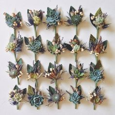 An assortment of 5 succulent boutonnieres with textural elements such as thistle, tallow berry, lavender, flower pods, and ghost leaves. One of a kind boutonnieres for every member of your bridal party. Two boutonniere pins included for each piece. Boutonnieres, Succulent Boutonniere, Succulent Bouquet, Boutonniere Pins, Vintage Boutonniere, Succulent Care, Boho Wedding, Floral Wedding, Wedding Flowers
