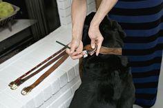 Old Belts Into New Dog Collars :: Hometalk