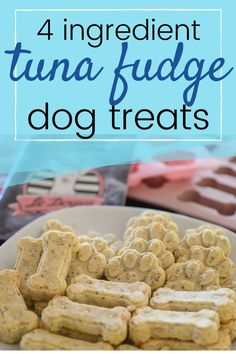 Easy diy dog treat tuna fudge recipe with a version made with flour as well as a gluten free version! Puppy Treats, Diy Dog Treats, Healthy Dog Treats, Dog Treats Grain Free, Puppy Food, Pet Food, Homemade Dog Cookies, Homemade Dog Food, Dog Biscuit Recipes