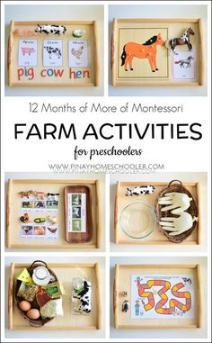 Montessori Inspired Farm Activities for Preschoolers - Montessori , Montessori Inspired Farm Activities for Preschoolers Collection of farm related activities for preschoolers KIGAbeschäftigungen. Montessori Trays, Montessori Homeschool, Montessori Classroom, Montessori Toddler, Montessori Materials, Montessori Bedroom, Physics Classroom, Materials Science, Farm Activities