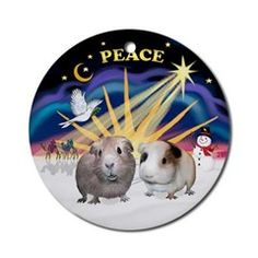 """Two Guinea Pigs Christmas Ornament - in my design I call """"Christmas Sunrise"""".  Come see more guinea pig ornaments in my store at  PrettyOrnaments.com"""