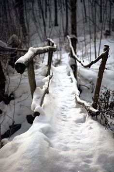 Uploaded by Cris Figueiredo. Find images and videos about nature, winter and snow on We Heart It - the app to get lost in what you love. Winter Szenen, I Love Winter, Winter Magic, Winter Christmas, Winter Walk, Prim Christmas, Christmas Trees, Retro Christmas, Country Christmas