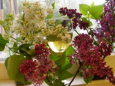 Might have to make this next.  @ leslie land (bakaitis photo) lilacs and wine