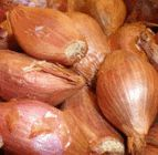 Health benefits of Shallots    Shallots have better nutrition profile than onions. Have more anti-oxidants, minerals, and vitamins on weight per weight basis than onions.