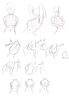 Drawing tutorials - Female torso/breast - Imgur. I find the body hard to draw at times this really helps