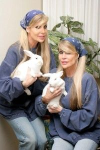 Bunnies rescuing Bunnies!  Am I seeing double?