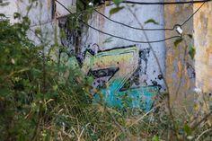 Ancienne usine de Pierrefonds Images, Photos, Plants, Painting, Art, Photography, Art Background, Painting Art, Kunst