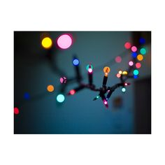 Fuck Yeah CHRISTMASTIME ❤ liked on Polyvore featuring pictures, backgrounds, photos, christmas and winter