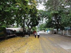 Walking through the streets of La Libertad in The Philippines. #travel #asia http://merevin.com/banogon-family-reunion/