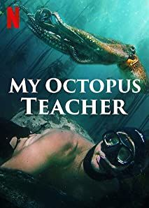 Teacher Posters, Teacher Quotes, Netflix Documentaries, Anatole France, Television Program, Her World, Underwater World, He Is Able, New Perspective