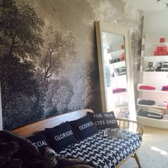 Ph mbr on pinterest linen duvet cloud wallpaper and for Anthropologie etched arcadia mural