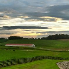 Dortmund will stand here, at Bonita Farm in Darlington, Maryland for his first breeding season. Thoroughbred Horse, Horse Farms, Maryland, Golf Courses, Around The Worlds, Horses, Seasons, Beautiful, Dortmund