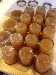 Life and Times at the Scorpion Ranch: Pear Honey-------Going to try this with 3 cups of honey instead of sugar and a fresh pineapple instead of can. Jelly Recipes, Fun Easy Recipes, Interesting Recipes, Pear Honey Recipes, Pear Honey Recipe With Pineapple, Pineapple Jam, Crushed Pineapple, Canning Pears, Home Canning Recipes