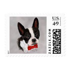 Boston Terrier Postage - dog puppy dogs doggy pup hound love pet best friend