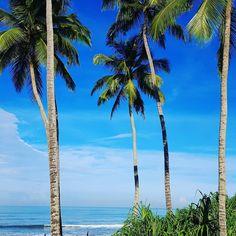 Same scenery. Daytime. Good morning.  Location  #srilanka  P. Copyright #electraasteri