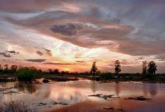 A Central Florida sunset at  the Circle B Bar Reserve, Polk County. Photo Credit: Rich Turk.